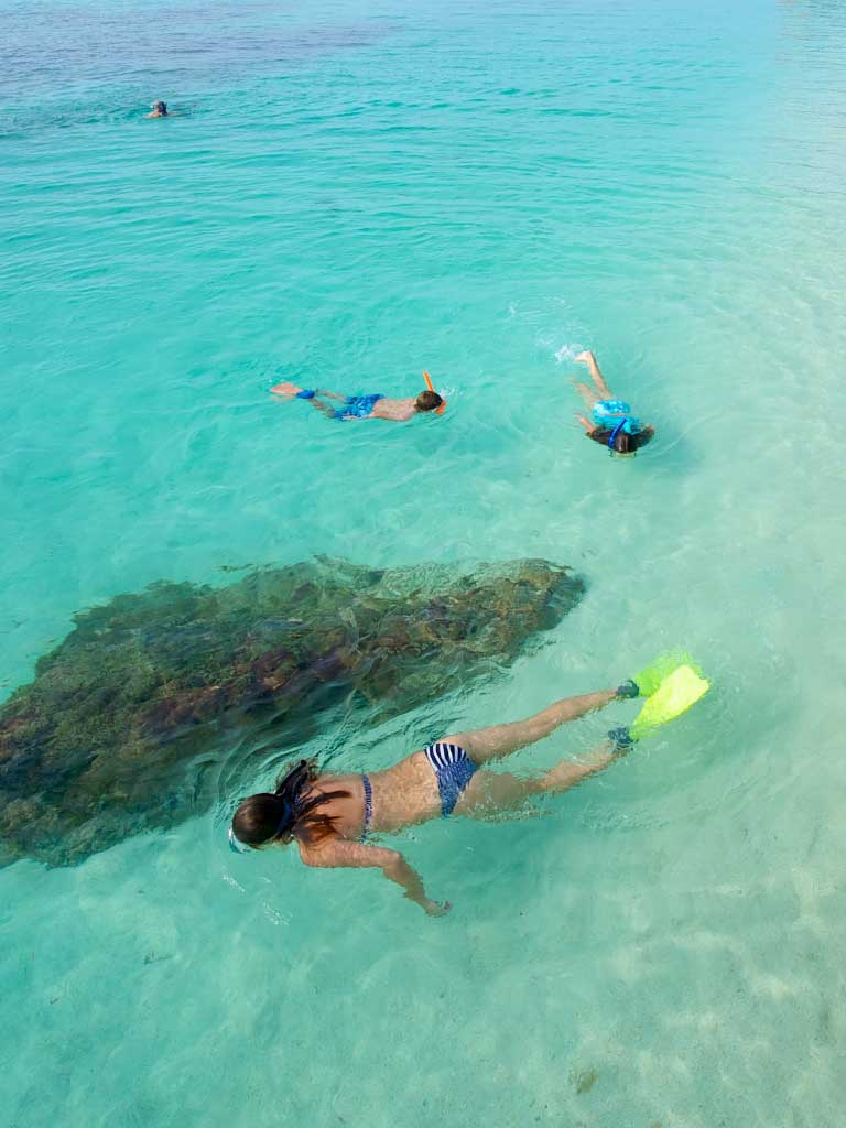 photo of people snorkeling in the dry tortugas