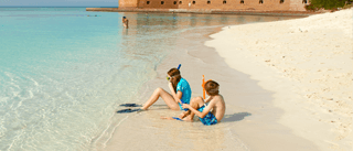 snorkeling at the dry tortugas mobile