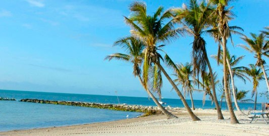 Smathers Beach in Key West with palm trees in the background under blue sunny skies