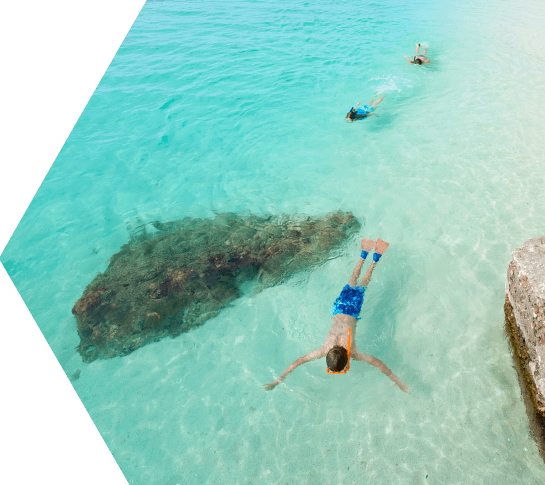 photo of snorkeling in the dry tortugas