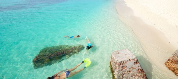 photo of dry tortugas snorkeling