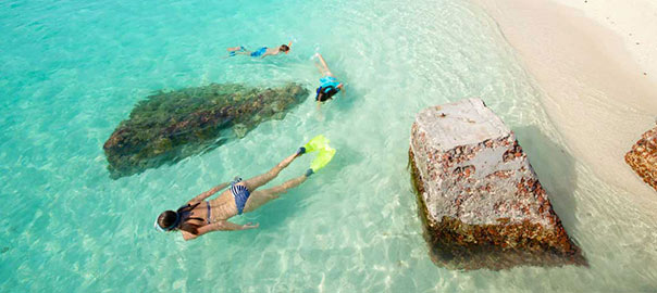 Snorkel at Dry Tortugas National Park